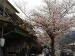 2017京都20.jpg
