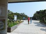 2018城ヶ島2.jpg