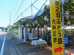 2019万座渋川23.jpg