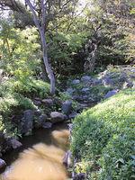 2019旧古河庭園12.jpg