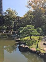 2019旧古河庭園13.jpg