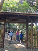 2019旧古河庭園14.jpg