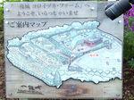 2020一夜城ヨロイヅカファーム2.jpg