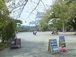 2020小田原城11.jpg
