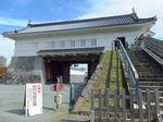 2020小田原城3.jpg