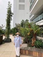 2020JR横浜タワー4.jpg