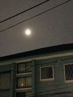 2021スーパームーン皆既月食6.jpg