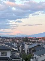 2021朝焼けの富士山.jpg