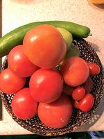 2021裏庭の野菜1.jpg