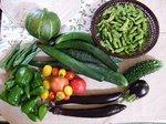 野菜収穫(2)