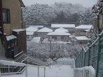snowfall3.jpg